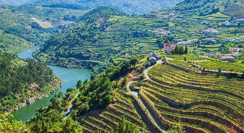 Les vignobles du Douro pour vivre dans le nord du Portugal