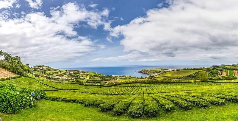 Les Açores, une région verdoyante du Portugal